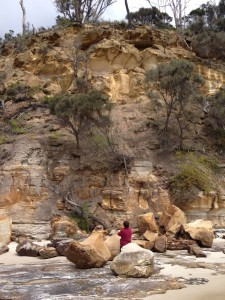 Looking to the source of the boulders, Northern Cliff, Spring Beach.