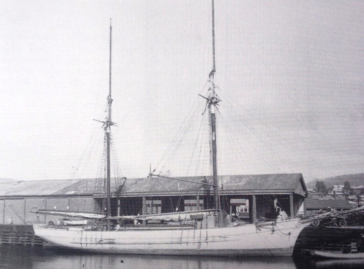Black and white image of the Annie Taylor docked at Hobart